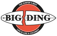 BIG DING Surfboard Repair Products